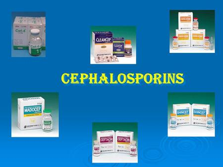 Cephalosporins. Introduction  The cephalosporins are β-Lactam antibiotics that are closely related both structurally and functionally to the penicillins.