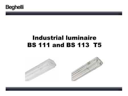 Industrial luminaire BS 111 and BS 113 T5.