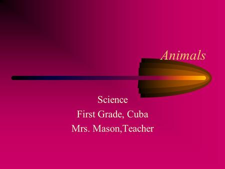 Animals Science First Grade, Cuba Mrs. Mason,Teacher.