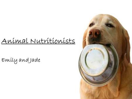 Animal Nutritionists Emily and Jade. Training and Education Training depends on what kinds of animals you intend to work with; internships at zoos or.