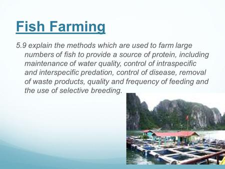 Fish Farming 5.9 explain the methods which are used to farm large numbers of fish to provide a source of protein, including maintenance of water quality,