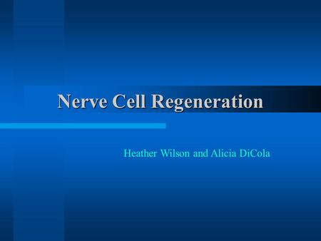 Nerve Cell Regeneration Heather Wilson and Alicia DiCola.
