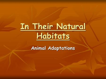 In Their Natural Habitats Animal Adaptations. INTRODUCTION The place where an organism lives is called a habitat The place where an organism lives is.