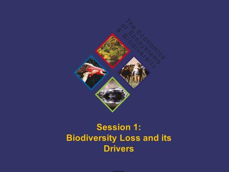 TEEB Training Session 1: Biodiversity Loss and its Drivers ©TEEB.