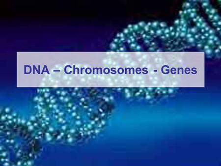 DNA – Chromosomes - Genes. DNA DNA: the chemical inside the nucleus of a cell that carries the genetic instructions for making living organisms. The material.
