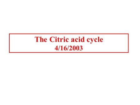 The Citric acid cycle 4/16/2003