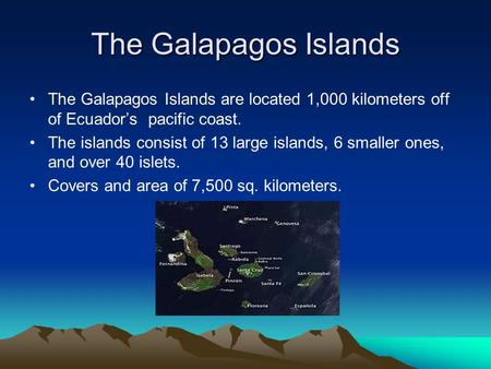 The Galapagos Islands The Galapagos Islands are located 1,000 kilometers off of Ecuador's pacific coast. The islands consist of 13 large islands, 6 smaller.