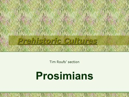 Prehistoric Cultures Tim Roufs' section Prosimians.