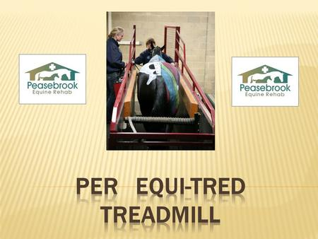 PER Equi-Tred Treadmill For most of our rehabilitation cases the inclusion of the Equi-Tred Treadmill in exercise programmes, is the best way to provide.