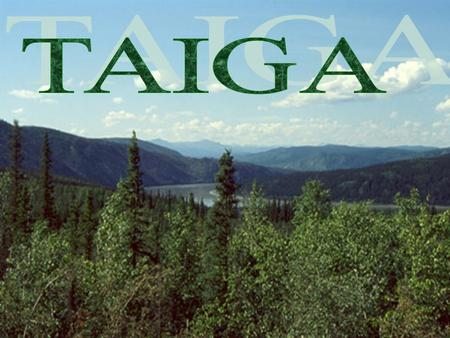 Where is the Taiga Located? Taiga Biome  The Taiga biome stretches across a large portion of Canada, Europe and Asia. It is the largest biome in the.