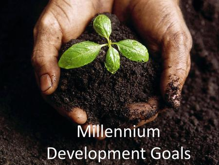 Millennium Development Goals. At the United Nations Millennium Summit in 2000, world leaders met to develop a plan to improve the quality of life in developing.