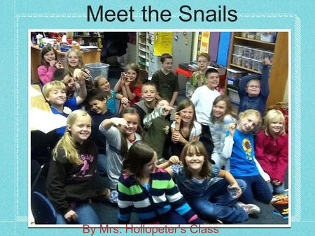 Meet the Snails By Mrs. Hollopeter's Class. Snail Structures By Wade, Troy, Alexis, Blake, and Jordayn They have 2 eyes. They have small antennas. They.