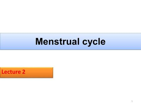 Menstrual cycle Lecture 2.