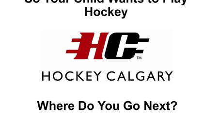 So Your Child Wants to Play Hockey Where Do You Go Next?