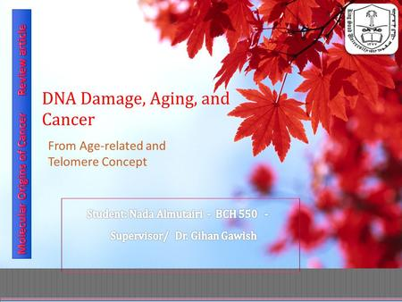 DNA Damage, Aging, and Cancer From Age-related and Telomere Concept.