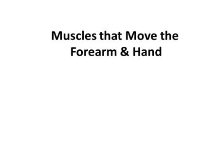 Muscles that Move the Forearm & Hand. 2 Muscles that Move the Forearm: 1. These muscles arise from the humerus or pectoral girdle and connect to the ulna.