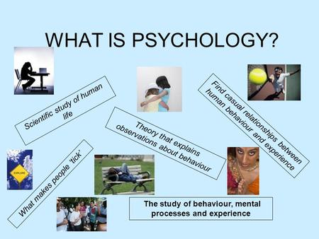 WHAT IS PSYCHOLOGY? Scientific study of human life