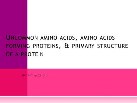 By: Kim & Caitlin U NCOMMON AMINO ACIDS, AMINO ACIDS FORMING PROTEINS, & PRIMARY STRUCTURE OF A PROTEIN.