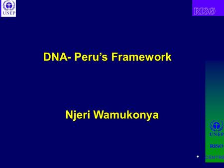 DNA- Peru's Framework CENTRE Njeri Wamukonya. CENTRE Demonstrate with a real case what countries may wish to take into account when establishing DNA Aim.