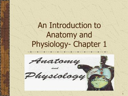 1 An Introduction to Anatomy and Physiology- Chapter 1.