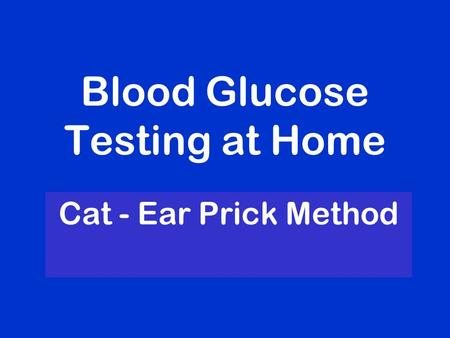 Blood Glucose Testing at Home Cat - Ear Prick Method.