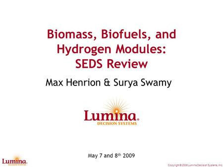 Biomass, Biofuels and Hydrogen Sectors in Context of SEDS