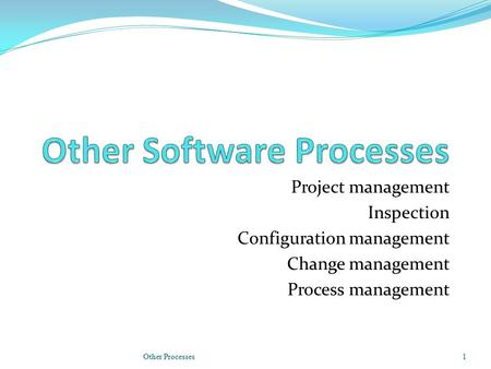 Project management Inspection Configuration management Change management Process management Other Processes1.