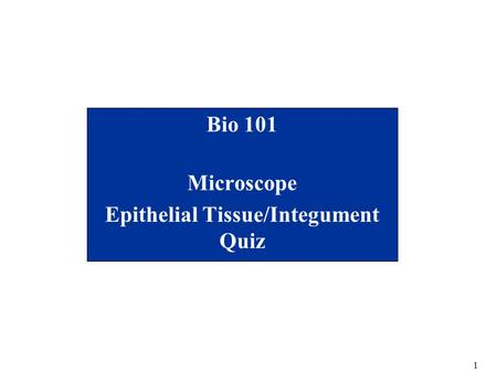 Bio 101 Microscope Epithelial Tissue/Integument Quiz
