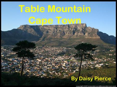 Table Mountain Cape Town By Daisy Pierce. Table Mountain Facts Table Mountain is a flat topped mountain overlooking Cape Town in South Africa It is 1,086.
