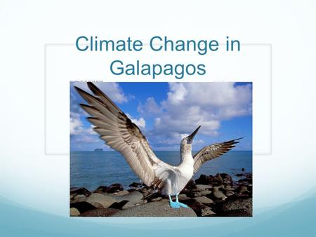 Climate Change in Galapagos. The effects of change in global climate and El Niño* events can be frequent and intense could severely impact ecosystem function.