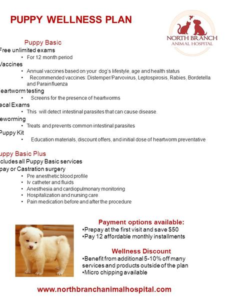 PUPPY WELLNESS PLAN www.northbranchanimalhospital.com Puppy Basic  Free unlimited exams For 12 month period  Vaccines Annual vaccines based on your dog's.