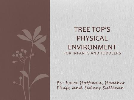 FOR INFANTS AND TODDLERS By: Kara Hoffman, Heather Fleig, and Sidney Sullivan TREE TOP'S PHYSICAL ENVIRONMENT.