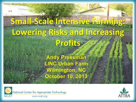 Small-Scale Intensive Farming: Lowering Risks and Increasing Profits Andy Pressman LINC Urban Farm Wilmington, NC October 10, 2013 Photo: SPIN-Farming®