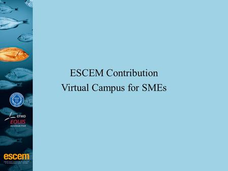 ESCEM Contribution Virtual Campus for SMEs. ESCEM Key figures –2,600 students –12,400 alumni in 78 different countries and 3,000 firms –66 professors.