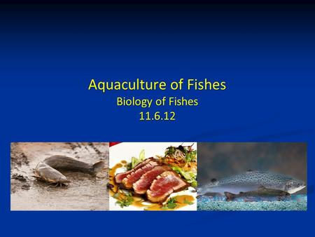 Aquaculture of Fishes Biology of Fishes 11.6.12. Presentation Guidelines Presentation Guidelines Syllabus Revisions Syllabus Revisions Guest Lecture 2.