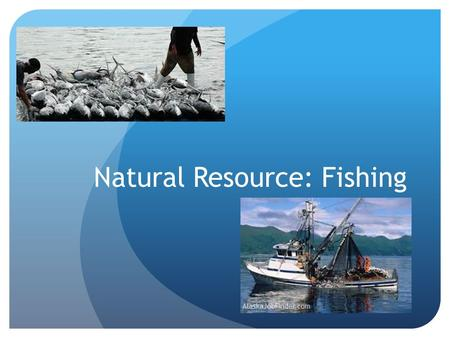Natural Resource: Fishing. East Coast Fishery Fisherman noticed they were catching fewer and smaller fish. The Canadian government responded in 1992 by.