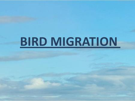 BIRD MIGRATION. Why do birds migrate? Birds migrate to move from areas that have low or decreasing resources The two most important resources being looked.