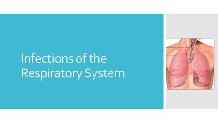 Infections of the Respiratory System. Why is this system important?  The respiratory system is the most commonly infected system  Health care providers.