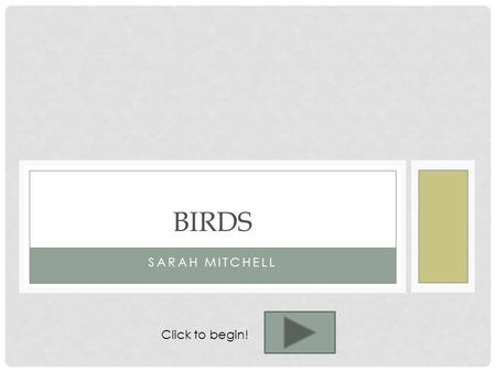 SARAH MITCHELL BIRDS Click to begin!. TEACHER'S PAGE Objectives: Given a beak type, students will be able to identify what food the bird eats with complete.