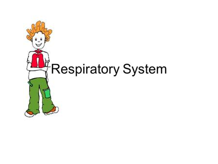 Respiratory System. Look at your diagram of the RESPIRATORY SYSTEM It shows the apparatus for breathing. Breathing is the process by which oxygen in the.