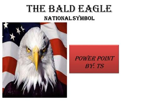The Bald Eagle National Symbol Power Point By: TS.