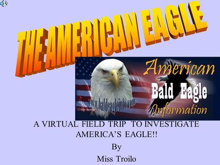 A VIRTUAL FIELD TRIP TO INVESTIGATE AMERICA'S EAGLE!! By Miss Troilo.