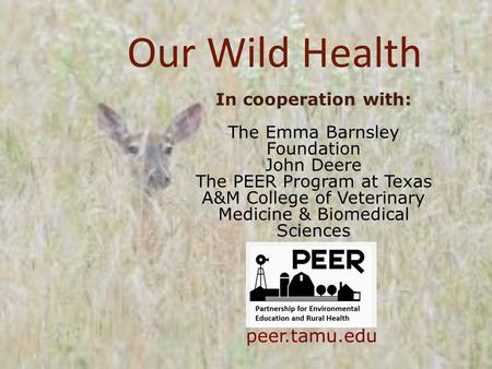 Our Wild Health In cooperation with: The Emma Barnsley Foundation John Deere The PEER Program at Texas A&M College of Veterinary Medicine & Biomedical.