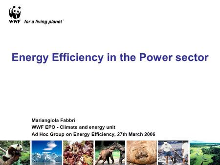 Energy Efficiency in the Power sector Mariangiola Fabbri WWF EPO - Climate and energy unit Ad Hoc Group on Energy Efficiency, 27th March 2006.