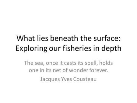 What lies beneath the surface: Exploring our fisheries in depth