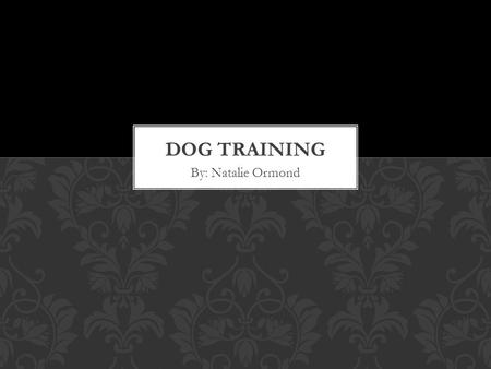 By: Natalie Ormond. Teach how to train dogs in a more productive and rewarding way. Dog owner; recently got a lab puppy Everyone has dogs in their lives.