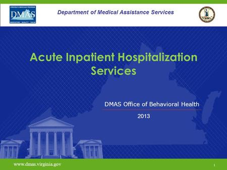 Acute Inpatient Hospitalization Services