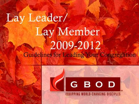 Lay Leader/ Lay Member 2009-2012 Guidelines for Leading Your Congregation.