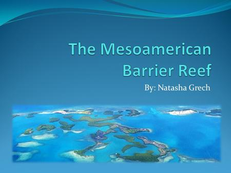 The Mesoamerican Barrier Reef