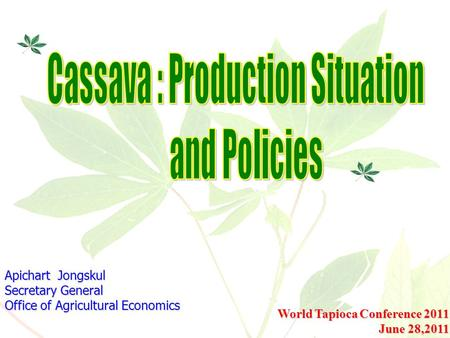 Cassava : Production Situation